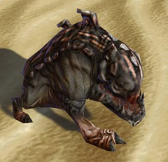 swtor-slate-mouse-horranth-pet-2