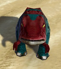swtor-striped-blurrg-pet-2