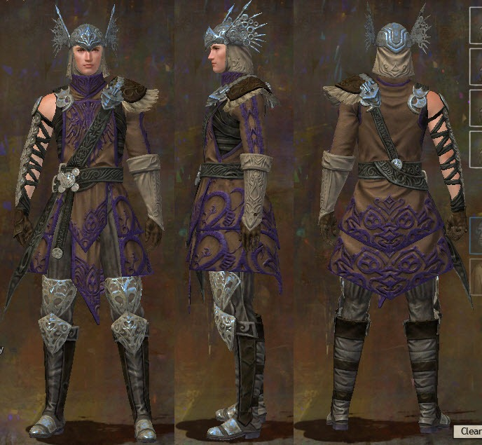 gw2 ascended armor medium human male