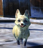 gw2-mini-arctic-fox-kit