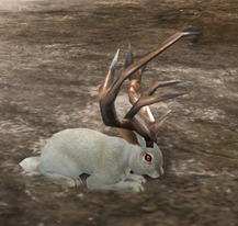 gw2-potion-of-jackalope-transformation-2