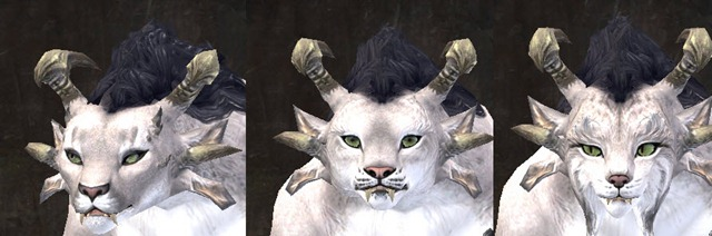 gw2-total-makeover-kit-new-faces-charr-female