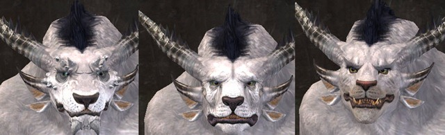 gw2-total-makeover-kit-new-faces-charr-male
