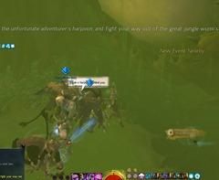 gw2-great-jungle-wurm-boss-guide-amber-harpoon