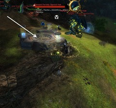 gw2-great-jungle-wurm-boss-guide-crimson-phytotoxins-3
