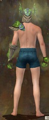 gw2-wurmslayer's-armor-medium-human-male-3