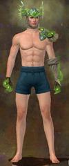 gw2-wurmslayer's-armor-medium-human-male