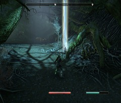 eso-glenumbra-skyshards-in-the-roots-of-the-hallows-3