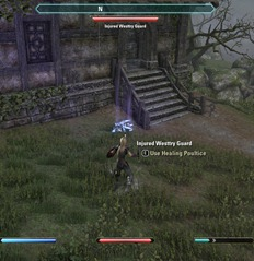 eso-the-ghosts-of-westtry-glenumbra-quest-4