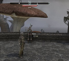 eso-a-begining-at-bleakrock-stonefalls-quest-guide-2