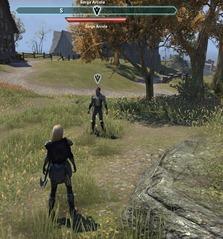 eso-a-ransom-for-miranda-stormhaven-quest