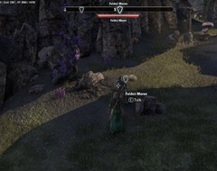eso-an-unwanted-twin-stonefalls-quest-guide-2