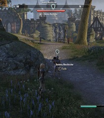 eso-army-at-the-gates-stormhaven-quest