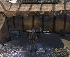 eso-at-frost's-edge-bleakrock-isle-quest-guide-2