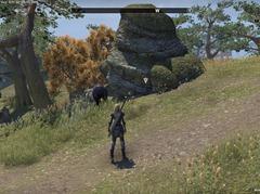 eso-azura's-aid-stormhaven-quest-guide-2