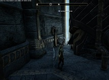 eso-bangkorai-skyshards-guide-meddling-imperial-disrupt-the-wheel-3