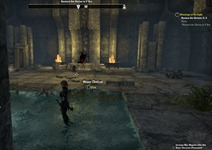 eso-blessings-of-the-eight-auridon-quest-guide-2