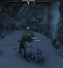 eso-dangerous-webs-bleakrock-quest-guide-3