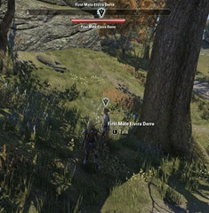 eso-divert-and-deliver-stormhaven-quest