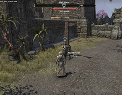 eso-exquisite-tears-stonefalls-quest-guide-2