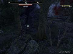 eso-eye-spy-auridon-quest-guide-2
