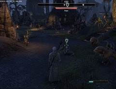 eso-finding-the-family-bal-foyen-quest-guide