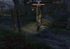 eso-flipping-the-coin-grahtwood-quest-guide-2