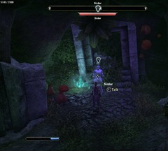 eso-forgotten-soul-grahtwood-quest-guide