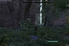 eso-grahtwood-skyshards-guide-the-shrine-of-the-south-leads-north-2