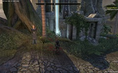 eso-grahtwood-skyshards-guide-where-the-road-to-the-root-is-an-isle-2
