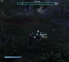eso-handmade-guardian-greenshade-quest-guide-4