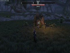 eso-hunting-the-wasp-greenshade-quest-guide-2