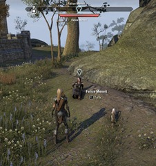 eso-injured-spirit-wardens-stormhaven-quest-2
