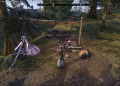 eso-lorebooks-eastmarch-lore-all-about-giants