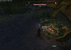 eso-lorebooks-grahtwood-lore-ayleid-survivals-in-valenwood-2