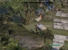 eso-lorebooks-greenshade-lore-the-green-pact-and-the-dominion