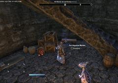 eso-lorebooks-shadowfen-fair-argonian-maiden