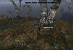 eso-lorebooks-the-rift-lore-the-wandering-skald