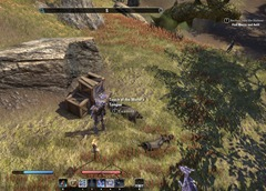 eso-lorebooks-the-rift-lore-touch-of-the-worm's-tongue