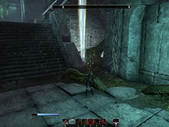 eso-malabal-tor-skyshards-guide-withered-within-the-vine-3