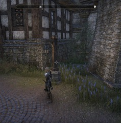 eso-one-last-game-stormhaven-quest-14