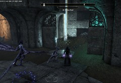 eso-shadowfen-skyshards-guide-digesting-in-the-belly-of-the-black-maw-3