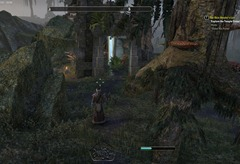 eso-shadowfen-skyshards-guide-ritual-flames-brew-trouble-in-the-mire