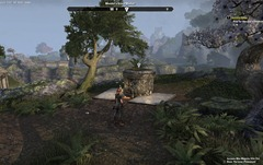 eso-spirited-away-auridon-quest-guide-3