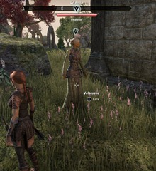 eso-the-first-patient-auridon-quest-guide