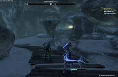 eso-the-frozen-man-bleakrock-isle-quest-guide-4