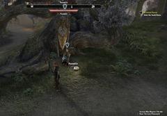 eso-the-mallari-mora-auridon-quest-guide