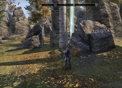 eso-the-rift-skyshards-guide-nearly-discovered-by-a-mauled-stablehand-2