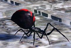 gw2-mini-toxic-spider-queen-set-3-minis-2