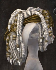 gw2-new-hairstyles-asura-male-1-2